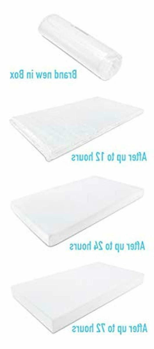 Premium Foam Bed Removable